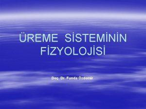 REME SSTEMNN FZYOLOJS Do Dr Funda zdemir Gonadlardaki
