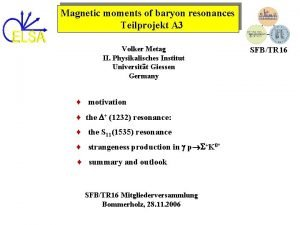 Magnetic moments of baryon resonances Teilprojekt A 3