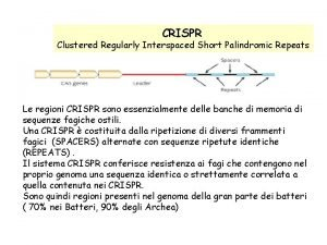 CRISPR Clustered Regularly Interspaced Short Palindromic Repeats Le