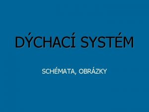 DCHAC SYSTM SCHMATA OBRZKY 1 Doplte 1 Kyslk