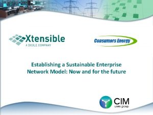 Establishing a Sustainable Enterprise Network Model Now and