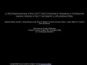 IL4 R Responsiveness of NonCD 4 T Cells