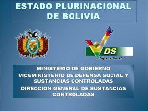 ESTADO PLURINACIONAL DE BOLIVIA MINISTERIO DE GOBIERNO VICEMINISTERIO