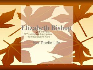 Elizabeth Bishop Her Poetic Life Her Life before