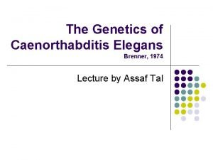 The Genetics of Caenorthabditis Elegans Brenner 1974 Lecture