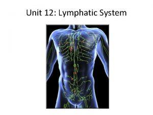 Unit 12 Lymphatic System Unit 12 Lymphatic System