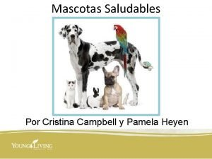 Mascotas Saludables Por Cristina Campbell y Pamela Heyen