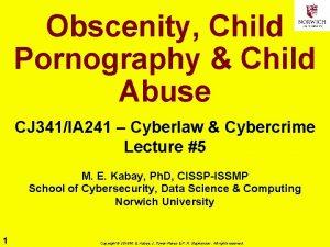 Obscenity Child Pornography Child Abuse CJ 341IA 241