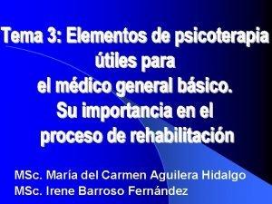 MSc Mara del Carmen Aguilera Hidalgo MSc Irene