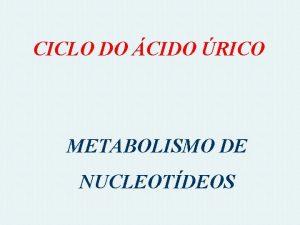 CICLO DO CIDO RICO METABOLISMO DE NUCLEOTDEOS CATABOLISMO