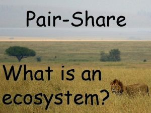 PairShare What is an ecosystem An ecosystem includes
