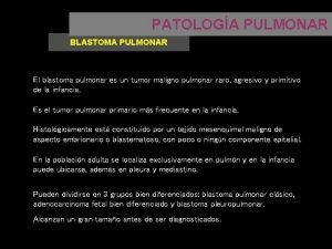 PATOLOGA PULMONAR BLASTOMA PULMONAR El blastoma pulmonar es