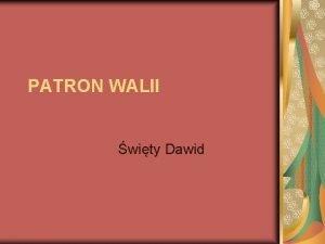 PATRON WALII wity Dawid yciorys wity Dawid 512