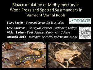 Bioaccumulation of Methylmercury in Wood Frogs and Spotted