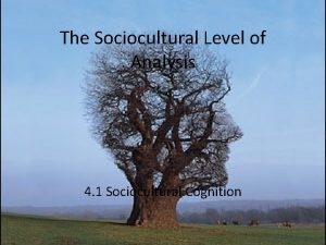 The Sociocultural Level of Analysis 4 1 Sociocultural
