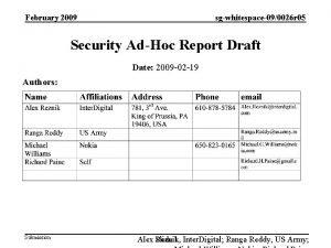 February 2009 sgwhitespace090026 r 05 Security AdHoc Report