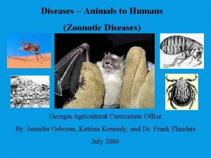 Diseases Animals to Humans Zoonotic Diseases Georgia Agricultural