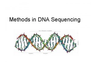 Methods in DNA Sequencing Big Picture Largescale sequencing