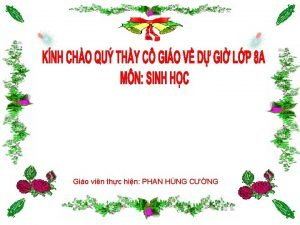 Gio vin thc hin PHAN HNG CNG EM
