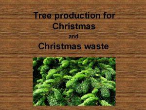 Tree production for Christmas and Christmas waste q