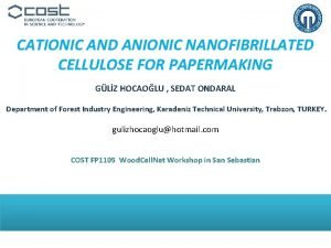 CATIONIC AND ANIONIC NANOFIBRILLATED CELLULOSE FOR PAPERMAKING GLZ