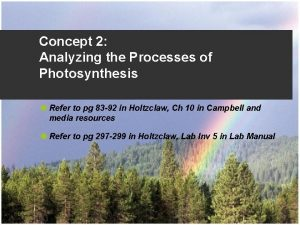 Concept 2 Analyzing the Processes of Photosynthesis u