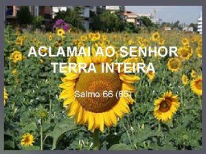 ACLAMAI AO SENHOR TERRA INTEIRA Salmo 66 65
