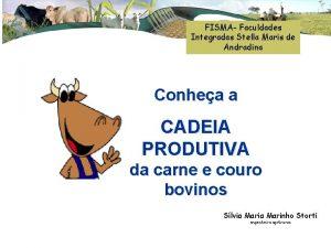 FISMA Faculdades Integradas Stella Maris de Andradina Conhea