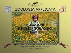 ZOOLOGIA APPLICATA INDICATORI E BIOMONITORAGGIO Prof Biagio DAniello