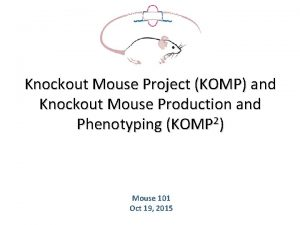 Knockout Mouse Project KOMP and Knockout Mouse Production