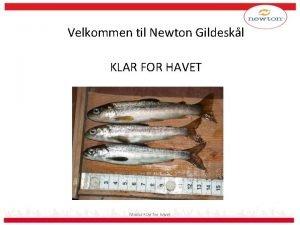 Velkommen til Newton Gildeskl KLAR FOR HAVET Modul