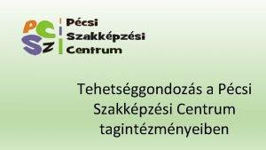 Tehetsggondozs a Pcsi Szakkpzsi Centrum tagintzmnyeiben Pcsi Szakkpzsi