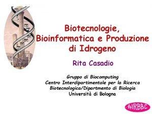 Biotecnologie Bioinformatica e Produzione di Idrogeno Rita Casadio