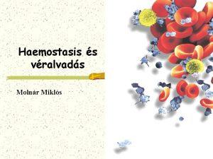 Haemostasis s vralvads Molnr Mikls A HAEMOSTASIS defincija
