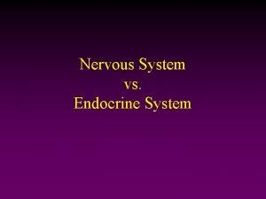 Nervous System vs Endocrine System Nervous System Endocrine