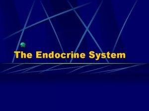 The Endocrine System Endocrine System Endocrine vs Exocrine