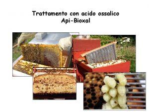 Trattamento con acido ossalico ApiBioxal Comunicato del 2