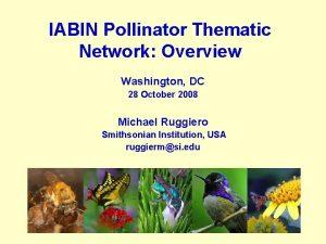 IABIN Pollinator Thematic Network Overview Washington DC 28
