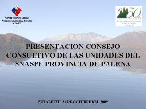 GOBIERNO DE CHILE Corporacin Nacional Forestal CONAF PRESENTACION