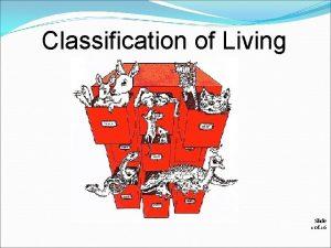 Classification of Living Organisms Slide 1 of 26