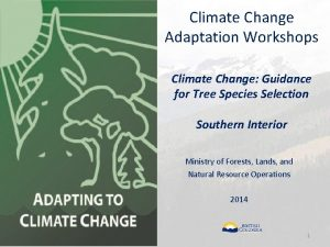 Climate Change Adaptation Workshops Climate Change Guidance for