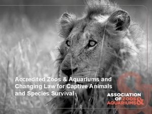 Accredited Zoos Aquariums and Changing Law for Captive