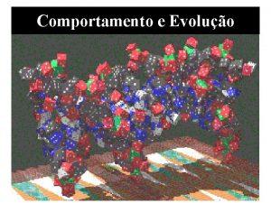 Comportamento e Evoluo Comportamento e Evoluo A Evoluo