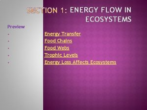 ENERGY FLOW IN ECOSYSTEMS Preview Energy Transfer Food