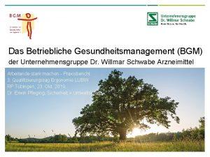 Das Betriebliche Gesundheitsmanagement BGM der Unternehmensgruppe Dr Willmar