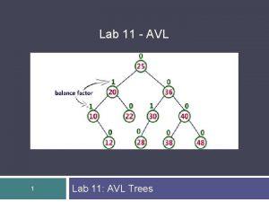 Lab 11 AVL 1 Lab 11 AVL Trees