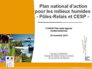 Plan national daction pour les milieux humides PlesRelais