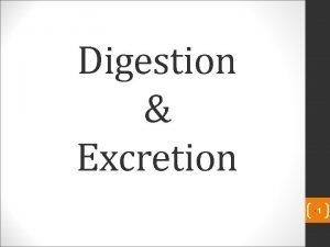 Digestion Excretion 1 Digestion The process by which