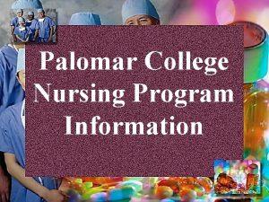 Palomar College Nursing Program Information Nursing Program Contact