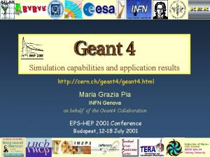 Simulation capabilities and application results http cern chgeant
